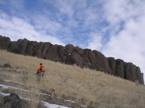 IDAHO CHUKAR HUNTING IN JANUARY