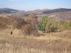 Walter and Andy work the tree line.
