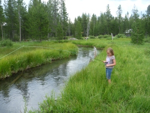 Eden fights a little brookie on Moose Creek.