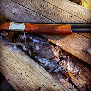 Ruger Red Label Over and Under an a big blue grouse.