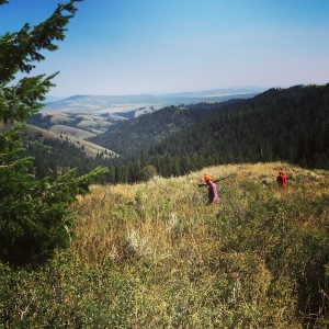 The view from Grouseketeer Ridge.